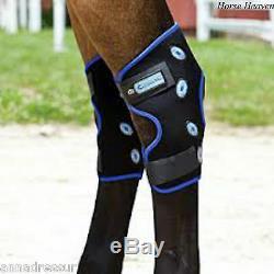 Veredus Magnetic Hock Boots New Veredus Magnetik Line M/L FAST FREE POST